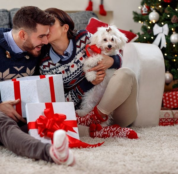 Happy couple opening gifts under the Christmas tree taking a new puppy out of a gift wrapped box