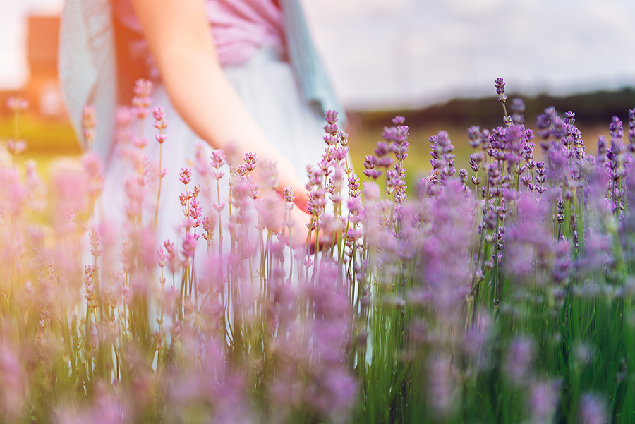 Girl's profile in a field of organic flowers symbolizing spring